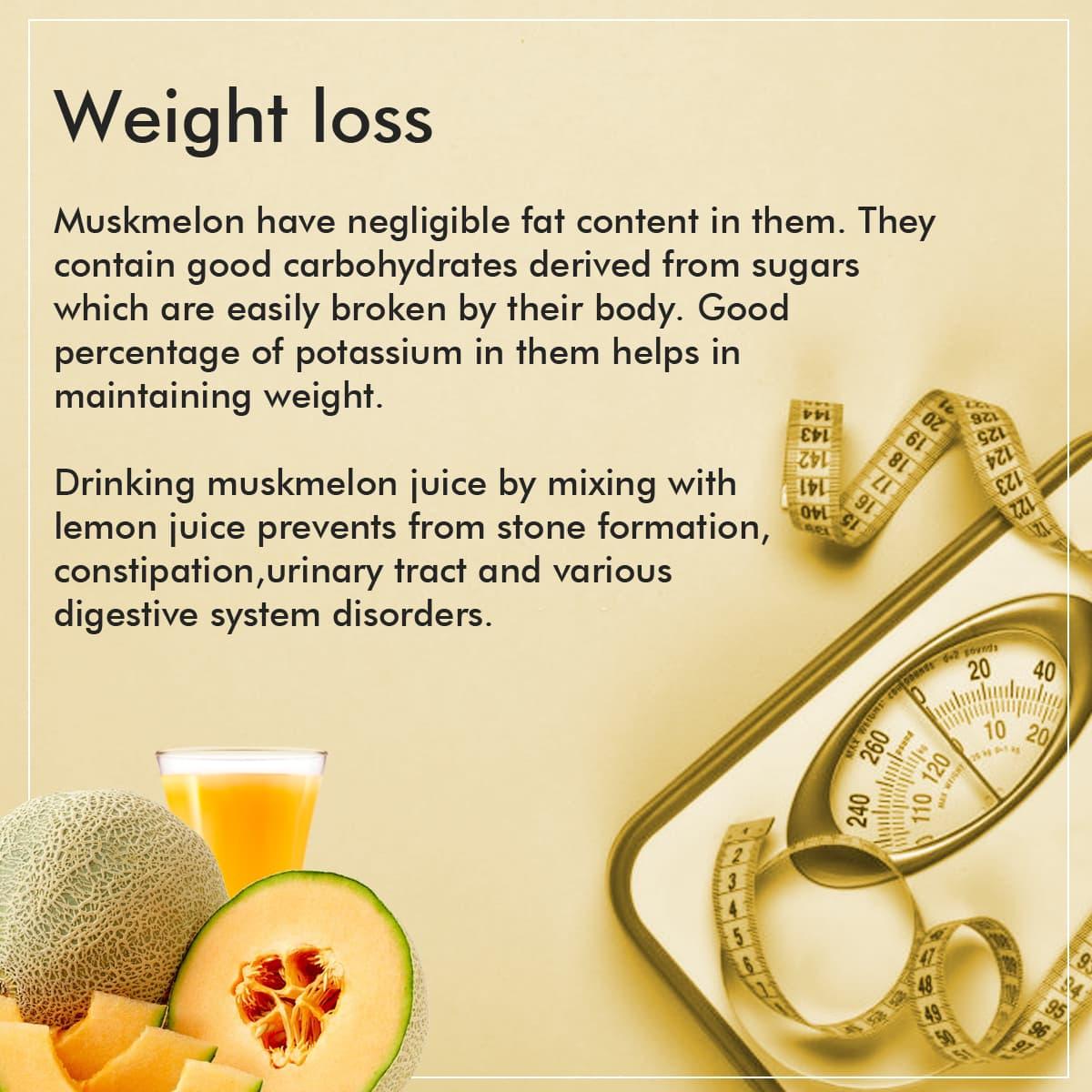 Muskmelon Juice Powder Nattfru Protein quality for melons, cantaloupe, raw includes usda commodity food a415. muskmelon juice powder