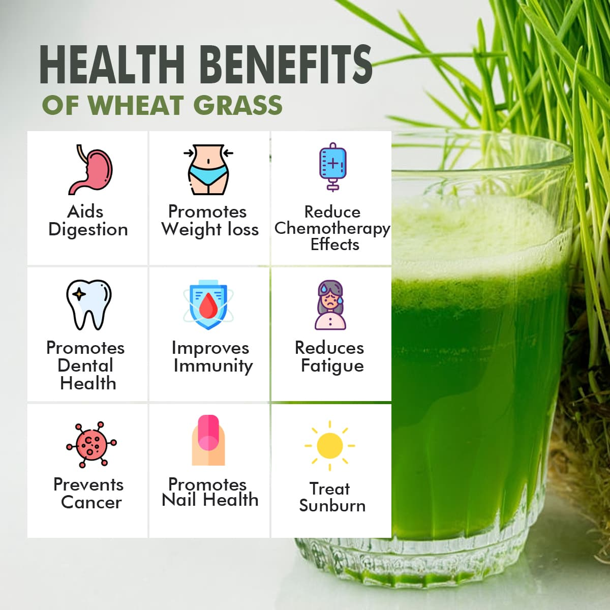 wheat grass juice powder - real fruit only (no added sugar)